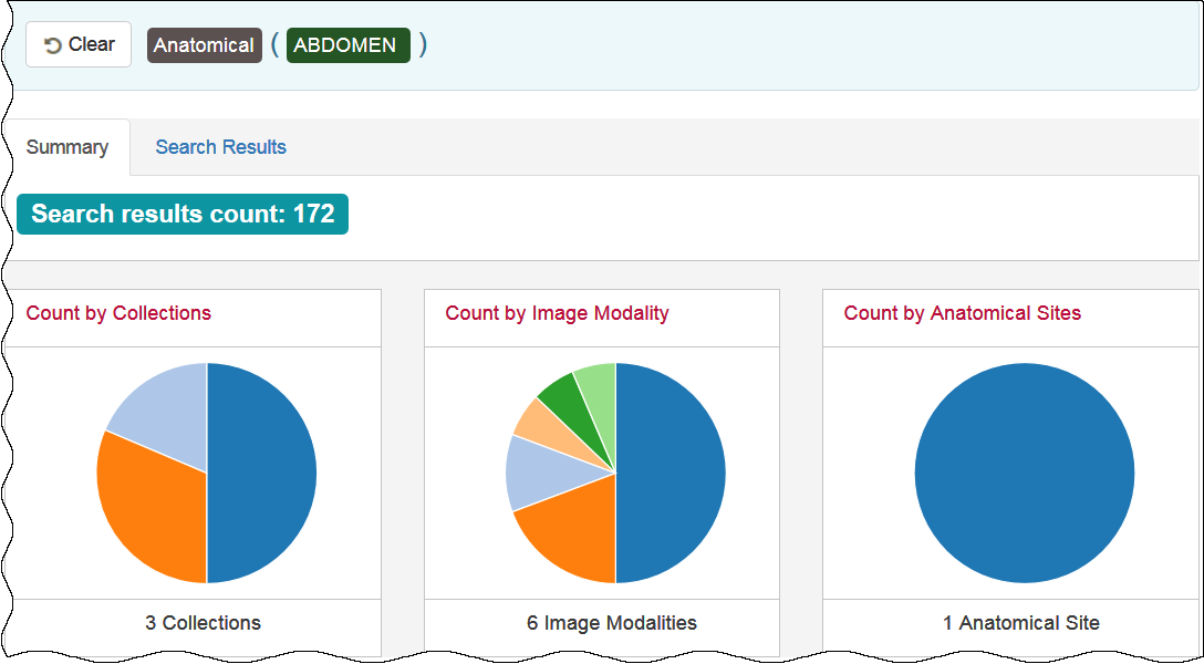 Summary tab showing pie charts
